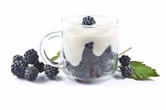 Fruticosus рубуса ежевик, десерт с сливк в стекле Стоковая Фотография