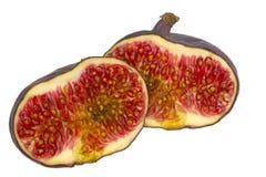Frutificam os figos Foto de Stock Royalty Free