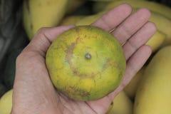fruto Ásia da laranja disponível Imagem de Stock