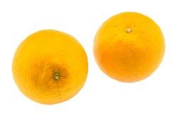 Fruto alaranjado Foto de Stock