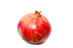 Fruto alaranjado do caqui em um fundo branco Imagens de Stock
