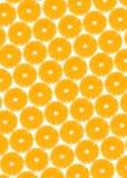 Fruto alaranjado ilustre para sua concentração da vitamina C, são um dos frutos os mais populares no mundo e teste padrão do orig Foto de Stock Royalty Free