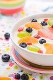 Fruto colorido leitoso delicioso do pudim de baunilha imagens de stock