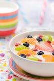 Fruto colorido leitoso delicioso do pudim de baunilha imagem de stock