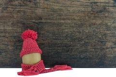 Fruto com fundo de madeira Fotografia de Stock Royalty Free
