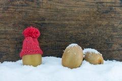 Fruto com fundo de madeira Foto de Stock Royalty Free
