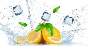 Fruto com respingo da água Fotografia de Stock Royalty Free