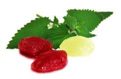 Fruto congelado, cubos de gelo vermelhos da baga isolados no fundo branco Fotos de Stock Royalty Free