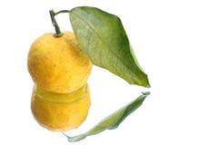 Fruto cor de limão japonês no fundo 2 da água branca Imagem de Stock Royalty Free