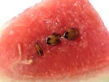 Fruto cortado da melancia imagens de stock