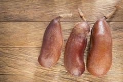 Fruto da alfarroba - courbaril do Hymenaea fotografia de stock royalty free