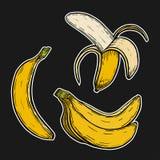 Fruto da banana, grupo Foto de Stock