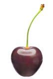 Fruto da cereja Imagens de Stock