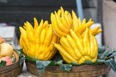 Fruto da mão da Buda Imagem de Stock