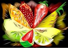 Fruto da mistura ilustração stock