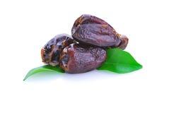 Fruto da palma de data secada foto de stock royalty free