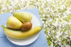 Fruto da pera, da banana e de quivi na tabela azul de madeira e no fundo natural das flores Frutas orgânicas frescas Vista superi Foto de Stock Royalty Free