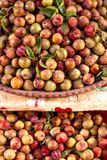 fruto de Ásia Foto de Stock