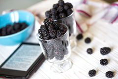 Fruto de Blackberry Fotografia de Stock