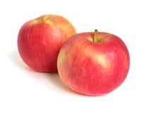 Fruto de duas maçãs no fundo branco Fotografia de Stock Royalty Free
