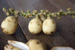 Fruto de Longkong em Tailândia imagens de stock