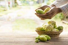 Fruto de Noni e cesta do noni na tabela de madeira E noni em sua mão Zumba dentro Fotos de Stock