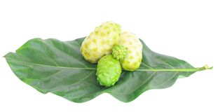 Fruto de Noni Indian Mulberry no fundo branco imagens de stock royalty free