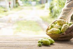 Fruto de Noni na tabela de madeira E cesta do noni em sua mão Zumbido in1 Fotografia de Stock Royalty Free