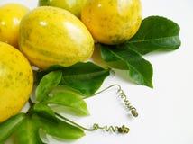 Fruto de paixão (Passiflora edulis) fotos de stock royalty free