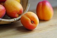 Fruto do abricó Imagem de Stock