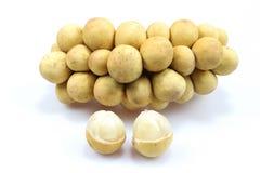 Fruto do doce de Wollongong foto de stock