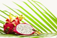 Fruto do dragão na folha de palmeira Fotos de Stock