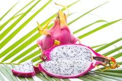 Fruto do dragão na folha de palmeira Fotografia de Stock Royalty Free