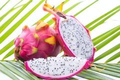 Fruto do dragão na folha de palmeira Imagem de Stock