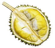 Fruto do Durian Foto de Stock