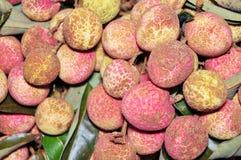 Fruto do lichi Fotografia de Stock Royalty Free
