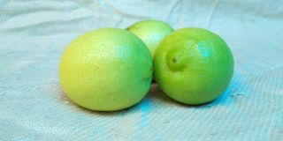 Fruto do limão Imagem de Stock