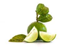 Fruto do limão do cal com uma metade isolado Foto de Stock