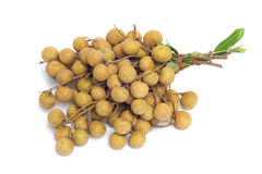 Fruto do Longan Fotografia de Stock