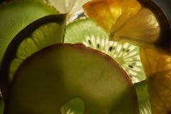 Fruto do luminoso Imagem de Stock