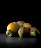 Fruto do marmelo Fotos de Stock Royalty Free