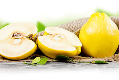 Fruto do marmelo Imagens de Stock