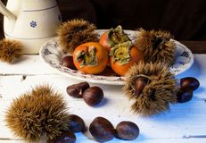 Fruto do outono imagens de stock