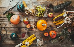 Fruto do outono na madeira Decoração da ação de graças imagens de stock royalty free