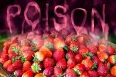 Fruto do perigo da morango dos resíduos químicos do inseticida e de inseticida venenosos fotografia de stock