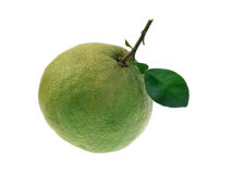 Fruto do Pomelo isolado no fundo branco Fotografia de Stock Royalty Free