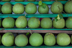 Fruto do Pomelo no mercado Fotografia de Stock Royalty Free