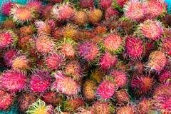 Fruto do Rambutan Fotografia de Stock Royalty Free