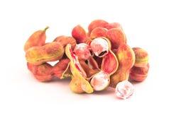 Fruto do tamarindo de Manila isolado Fotografia de Stock