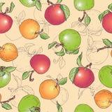 Fruto do teste padrão da maçã da tração da mão Fotos de Stock
